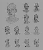 Wireframe head 3d model vector illustration Royalty Free Stock Images
