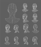 Wireframe head 3d model vector illustration Stock Images