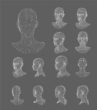 Wireframe head 3d model vector illustration Royalty Free Stock Photo
