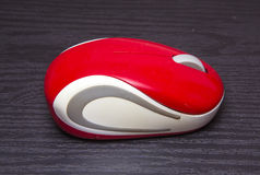 Wireless red computer mouse Royalty Free Stock Image