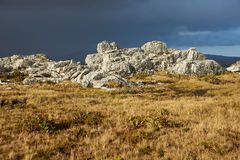 Wireless Ridge. Outcrops of rock protruding through course grasses on Wireless Ridge above Stanley, capital of the Falkland Islands Royalty Free Stock Images