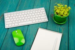 Wireless slim white keyboard and green mouse, notepad, flower on. Blue wooden background Stock Photo