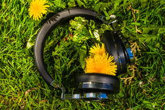 Wireless travel headphones Royalty Free Stock Photo