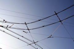 Wires Stock Photo