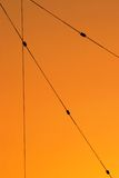 Wires. Abstract design of wires with the colors of sunset behind them Stock Images