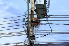 Wires and nest Royalty Free Stock Photos
