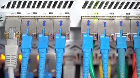 Wires in a router, close-up stock video