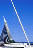 Wires supporting calatrava Royalty Free Stock Photography