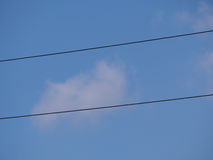 Wires thrashed through the sky Stock Images