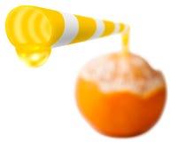 Wirklich natürliches orange frisches Stockbild
