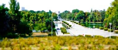 Wirkliche Miniaturparklandschaft Stockfoto