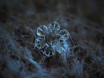 Wirkliche Schneeflocke, die auf dunklen strukturierten Hintergrund glüht stockfotografie
