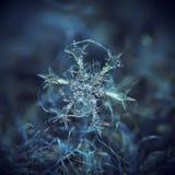 Wirkliche Schneeflocke, die auf dunklen strukturierten Hintergrund glüht lizenzfreie stockfotos