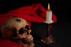 Wirkliche Spinne, die auf Schädel mit Kerze kriecht Stockbild