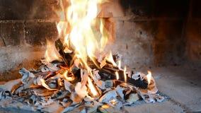 Wirkliches brennendes Holz stock video footage
