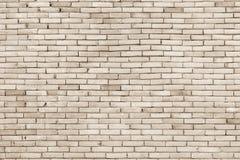 Wirkliches Foto der Fliesenwand-hohen Auflösung Fliesenwand nahtloses backgro Stockfotos