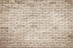 Wirkliches Foto der Fliesenwand-hohen Auflösung Fliesenwand nahtloses backgro Stockfotografie
