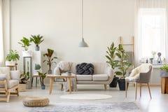 Wirkliches Foto eines botanischen Wohnzimmers Innen voll von den Anlagen mit lizenzfreie stockbilder