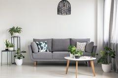 Wirkliches Foto eines einfachen Wohnzimmerinnenraums mit einem grauen Sofa, Anlagen und Couchtisch lizenzfreies stockfoto