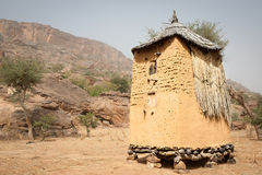 Świron w Dogon wiosce, Mali, Afryka. Fotografia Stock
