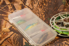 wirować wabije w pudełku i łowić rolkę Obraz Royalty Free
