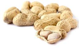 Wirrwarr-Erdnüsse auf weißem Hintergrund Lizenzfreie Stockfotografie