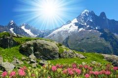 Wirsing-Alpen Stockfotos