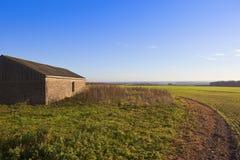 Wirtschaftsgebäude- und Weizenernte Lizenzfreies Stockbild