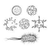 Wirusy grypy i E Coli bakterie Zdjęcia Stock