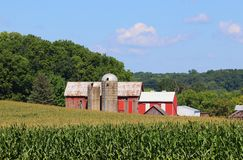 Wisconsin agriculture and nature background. stock images