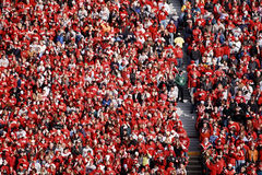 Wisconsin Badger Football Fans Stock Image