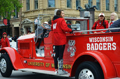 Wisconsin Badgers royalty free stock photo