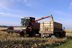 Wisconsin corn harvest Stock Photo