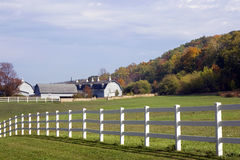 Wisconsin Dairy Farm. Acres of white wooden fence surrounds this large Wisconsin Dairy Farm. An autumn view of Wisconsin farm land stock images