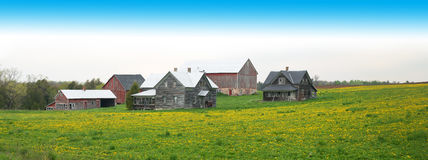 Wisconsin Dairy Farm Panorama, Banner Royalty Free Stock Image