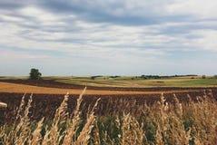Wisconsin fields. Fall fields in Wisconsin royalty free stock photos