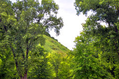 Wisconsin Hills. Lush green hills of Wisconsin royalty free stock photography