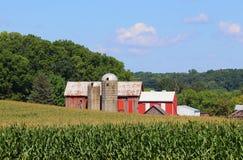 Wisconsin jordbruk och naturbakgrund arkivbilder