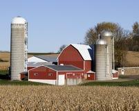 Wisconsin mejerilantgård och havrefält arkivbild