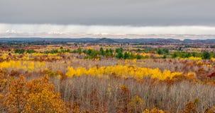 Black River Valley in Autumn Stock Photos