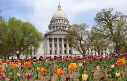 Wisconsin State Capitol building. Spring view with flower bed with bright tulips on a foreground. City of Madison, the capital of Wisconsin, Midwest USA royalty free stock photography