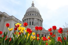Wisconsin State Capitol building. Spring view with flower bed with bright tulips on a foreground. City of Madison, the capital of Wisconsin, Midwest USA stock photography