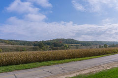 Wisconsin wiejska droga w jesieni Fotografia Stock