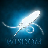 Wisdom. Concept on a colourful background Royalty Free Stock Photography