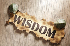 Wisdom concept Stock Photo