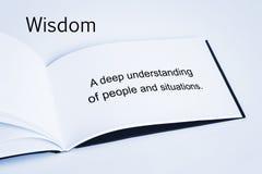 Wisdom Concept stock illustration