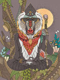 Wisdom elder baboon Royalty Free Stock Image
