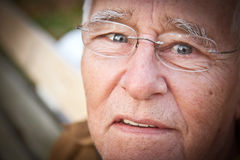 Wisdom in the Eyes Royalty Free Stock Images