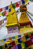 Wisdom eyes. In Nepal, Kathmandu stock image