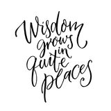 Wisdom grows in quite places. Inspirational quote for home, wall art poster. Modern calligraphy on white background. Wisdom grows in quite places. Inspirational Royalty Free Stock Images